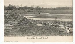 CPA, Trinitad , Pitch Lake - Trinidad , B.W.I. , Ed. Stephens - Trinidad