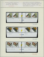 N° 2457 Sizerin Flammé (**)  Curiosité Des Petits Carrées De Repaire En Gris - 1985-.. Pájaros (Buzin)
