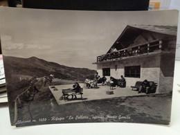 Cartolina Abetone   Prov Pistoia Rifugio La Selletta Sullo Sfondo Monte Gomito 1958 - Pistoia