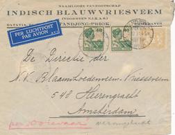 Nederlands Indië - 1931 - 87,5 Cent Frankering Op Briefvoorzijde - Crashmail Ooievaar - Van Tandjongpriok Naar Amsterdam - Netherlands Indies