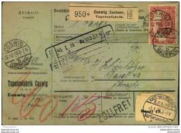 1919, Paketkarte Ab COSWIG (SACHSEN) Tapetenfabrik Nach Basel - Lettere