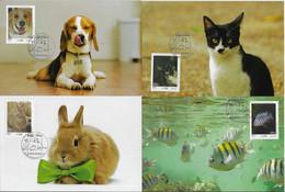 Brazil 2018 RHM-C-3766 3780 3787 3788 - 4 Maximum Card Fauna Animal Rabbit Dog Cat Fish Pet - Otros
