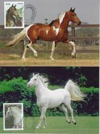 Brazil 2016 RHM-C-3592/3593 - 2 Maximum Card Fauna Animal Horse Breeds Horseshoe Diplomatic Relations Slovakia - Caballos