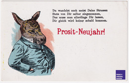 Bonne Année 1900/10 Allemagne Prosit Neujahr - Portrait D' âne Humanisé Anthropomorphisme - Humanized Donkey D2-291 - Año Nuevo