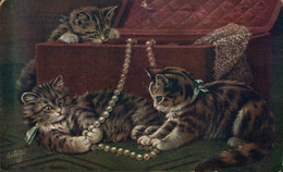 ILLUSTRATION THREE CATS GATOS CHATS OILETTE CATLAND SERIES   ANIMALES ANIMALS DIEREN ANIMALI - Non Classificati