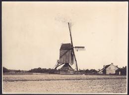 +++ Photo - Foto - GENCK - GENK - Le Moulin - Molen - Archives TCB  // - Genk