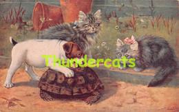 CPA  ILLUSTRATEUR CHIEN CHAT  ARTIST SIGNED  CARD DOG CAT RAPHAEL TUCK COBBS - Tuck, Raphael