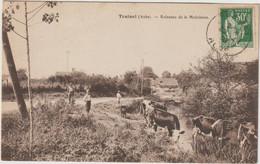 Trainel-Ruisseau De La Madeleine - Vaches  (E.1988) - Otros Municipios