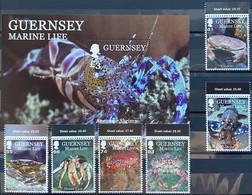 Guernsey 2014 MNH - Marine Life II - Guernsey