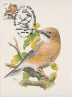 BUZIN. LE GEAI DES CHÊNES - 1985-.. Pájaros (Buzin)