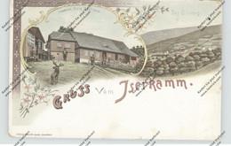 NIEDER-SCHLESIEN - BAD FLINSBERG / SWIERADOW ZDROJ, Lithographie, Heinrich Hirt's Gasthaus, Iserkamm - Schlesien