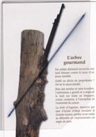 La Forêt D'Argonne. L'arbre Gourmand ;Un Soldat Allemand Accroche Son Fusil Mauser Contre Le Tronc...lire Légende.. - Otros