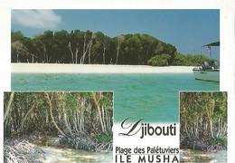 Djibouti Plage Des Paletuviers - Gibuti