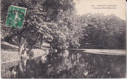 Orvault L étang Du Bois Raguenot éditeur Dugas N°429 - Orvault