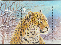 Guernsey 2009 MNH - Endangered Species Amur Leopard - Guernsey