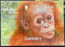 Guernsey 2014 MNH - Endangered Species Sumatran Orangutan - Guernsey