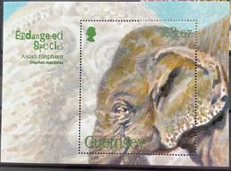 Guernsey 2010 MNH - Endangered Species Asian Elephant - Guernsey