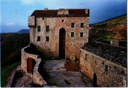 12 Chateau De MONTAIGUT Pres De St Affrique - Otros Municipios