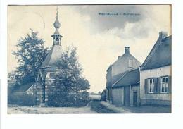 WESTMALLE  -  Zoerselbaan 1913  Uitg. Vve Loots, Hôtel De Leeuw - Malle