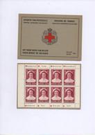 """BELGIQUE. 1953. 2 CARNETS.VARIETES.""""PRINCESSE J.CHARLOTTE"""".THEMES:CROIX-ROUGE.CELEBRITES.TOURISME.AVIATION. - Booklets 1953-...."""
