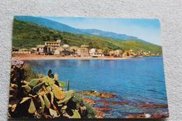 Cpm 1971, Miomo, Vue Générale, Corse - Other Municipalities