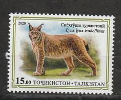 Tadjikistan. Tajikistan 2020  Lynx Du Tibet - Felinos