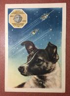 Famous 1st Dog In Space - Astronaut Dog Laika. RARE USSR Russian Postcard 1958 1st Traveler Space Sputnik. By GUNDOBIN - Dogs