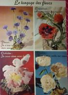 CPM Le Langage Des Fleurs Bleuet Coquelicot Orchidée Pivoine - Flowers