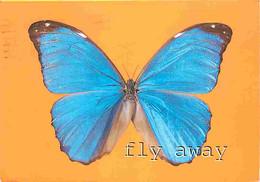 Animaux - Papillons - Papillon Bleu - CPM - Voir Scans Recto-Verso - Butterflies