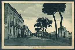 § Mondragone - Viale Del Mare § - Caserta