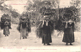 FR66 LES PYRENNEES ORIENTALES - Labouche 281 - Femmes Descendant Du Bois De La Montagne - Gros Plan - Animée - Belle - Otros Municipios