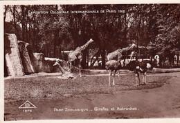 75 PARIS 1931 Exposition Coloniale Internationale Parc Zoologique Girafes Et Autruches - Esposizioni