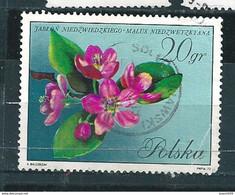 N° 1980 Fleurs D'arbres-fleurs De Pommier (pli Offert )   Timbre Pologne (1972) Oblitéré Sur Neuf Polska 20 Gr - Oblitérés