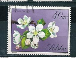 N° 1981  Fleurs D'arbres-fleurs De Pommier  Timbre Pologne (1972) Oblitéré Sur Neuf Polska 40 Gr - Oblitérés