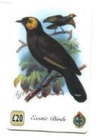 Télécarte UNITEL : Oiseaux Exotiques - Otros