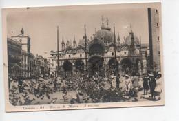 Venezia  84  -  Piazza  S.  Marco  -  Piccioni - Venezia (Venice)