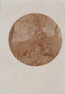 METZ  - MOSELLE - (57) - CARTE-PHOTO ANIMEE 1915. - Metz