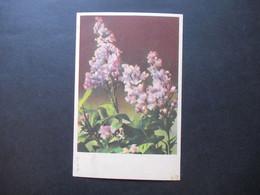 Böhmen Und Mähren Hitler Nr. 92 EF Auf PK Mit Blumenmotiv - Briefe U. Dokumente