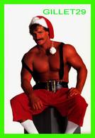 PIN-UPS, MAN - HOT BUDS, U.S.A. FOR CHRISTMAS -  1987 GEE WHIZ - - Pin-Ups