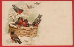AE666  FANTAISIES OISEAUX BOUVREUILS DANS LA NEIGE  PRECURSEUR - Birds