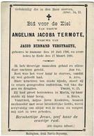 DAMME / EEDE (NL) - Angelina Jacoba TERMOTE - Wwe J. VERSTRAETE - °1798 En +1890 - Imágenes Religiosas