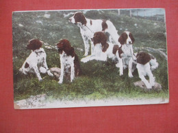 Tuck Series     Dogs   Ready For Sport   >    Ref 4649 - Chiens