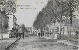 TOUL - AVENUE DE LA GARE - BELLE ANIMATION - 1905 - Toul