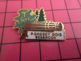 316a Pin's Pins / Beau Et Rare : Thème MARQUES / ARBRE BOIS PLANCHES P GRESET BESANCON - Trademarks