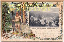 Präge-Litho Bad Harzburg (Harz) Blick Vom Kleinen Burgberge Aus, 1901 - Bad Harzburg