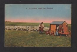CPA . EN BEAUCE . Berger Et Parc à Moutons . - Farmers