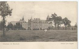 Bokrijk - Bockryk Près Hasselt - Château De Bockryk - 1907 - Hasselt