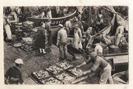 LA TURBALLE  Débarquement Des Sardines - La Turballe
