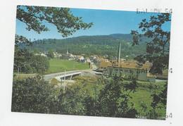 CPM - THIEFOSSE (88) Vue Générale - Other Municipalities