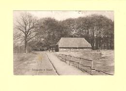 Elspeet Schaapskooi 1909 RY40851 - Other